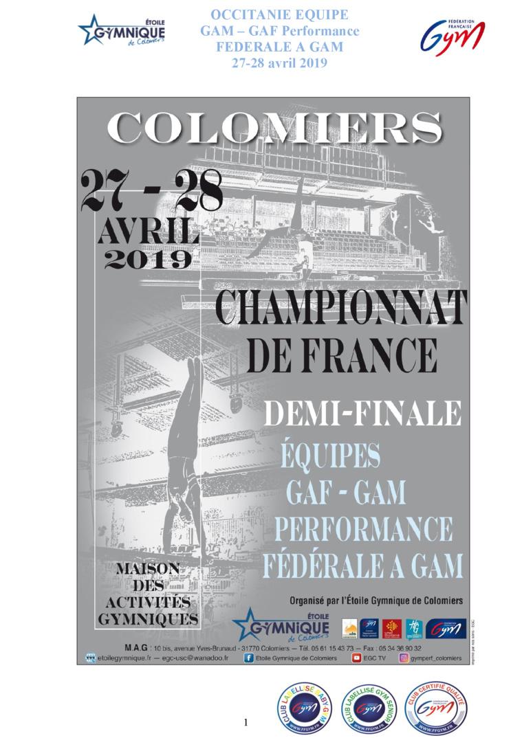 GAF - CHAMPIONNAT RÉGIONAL ÉQUIPES PERFORMANCE 27 et 28 Avril 2019 à COLOMIERS