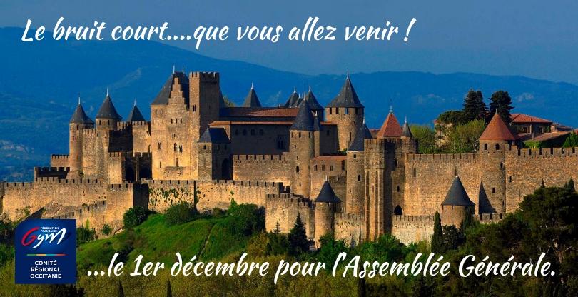 Assemblée générale annuelle du Comité régional Occitanie -1er dec 2018 à Carcassonne