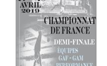 GAM - CHAMPIONNAT RÉGIONAL ÉQUIPES PERFORMANCE 27 et 29 Avril 2019 à COLOMIERS