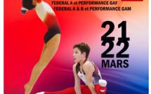 GAF - Inter-Départemental Sud Fédéral A Performance Equipe les 21 et 22 Mars 2020 à BLAGNAC