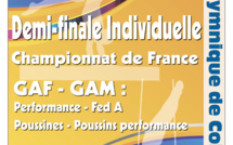 GAM - Région Individuelles Fed A  + Individuelles performance + Poussines Performance 4 et 5 Avril  2020 à Colomiers